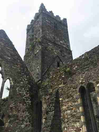 The ruins of Blackfriars Abbey, Waterford City.