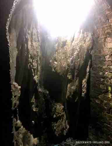 Stalagmite growing in Ballyvoile Tunnel.